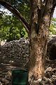 15-07-14-Edzna-Campeche-Mexico-RalfR-WMA 0610.jpg