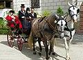 16.7.16 1 Historické slavnosti Jakuba Krčína v Třeboni 076 (28070515110).jpg