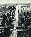 1965-4 1965年 新疆疏勒县牙甫泉一人民公社进行农田规划.jpg