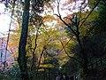 1 Minookōen, Minoo-shi, Ōsaka-fu 562-0002, Japan - panoramio (32).jpg