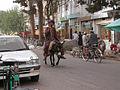 2007 donkey Herat city Afghanistan 1345882204.jpg