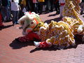 2008 Olympic Torch Relay in SF - Lion dance 44.JPG