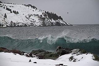 Torbay, Newfoundland and Labrador Town in Newfoundland and Labrador, Canada