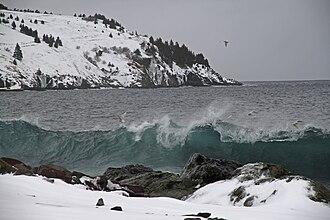 Torbay, Newfoundland and Labrador - Image: 2011 FEB 12 22 NEWFOUNDLAND 061 near Torbay (5453353530)