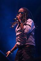 2013-08-23 Chiemsee Reggae Summer - T.O.K. et al. 4035.JPG
