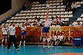 20130330 - Vannes Volley-Ball - Terville Florange Olympique Club - 090.jpg