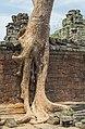 2016 Angkor, Preah Khan (40).jpg