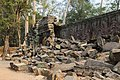 2016 Angkor, Ta Prohm (14).jpg