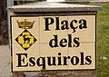 32 Placa de carrer (l'Esquirol).JPG