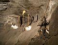 3371m Kopalnia soli Wieliczka. Foto Barbara Maliszewska.jpg