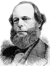 balding man with a dark bushy beard
