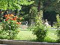4353 Istanbul - Topkapi - Giardini della seconda corte - Foto G. Dall'Orto 27-5-2006.jpg