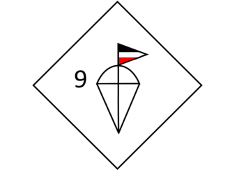 9th Parachute Division (Germany) - Unit insignia