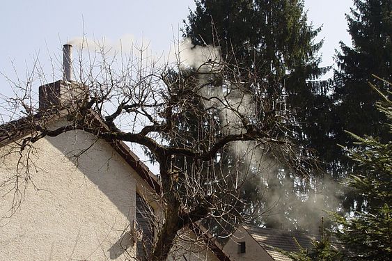 AB Feldchenstr Smoke.jpg