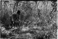 ASC Leiden - Coutinho Collection - 14 11 - Campada college on the northern frontline, Guinea-Bissau - Digging trenches - 1973.tif