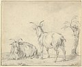 A Standing and a Lying Goat Near a Small Tree MET DP852155.jpg