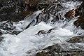 A cascade.jpg