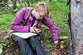 A field scientist conducting vegetation surveys in Denali (c3deacfc-29b9-4fc0-be28-e947452540ef).jpg