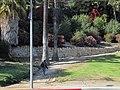 A man beginning to climb the path at an entrance to Elysian Park, Los Angeles, California.jpg