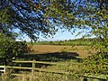 A rural view from Nathans Lane, Writtle, Essex - geograph.org.uk - 79321.jpg