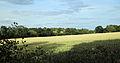 A view east from Gibberd Garden Essex England.JPG