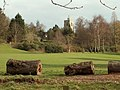 A view of South Weald church from Weald Country Park - geograph.org.uk - 731538.jpg