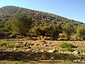 A view of nature of Kahman-Alashtar-Lorestan-Iran - panoramio.jpg