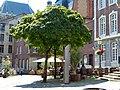 Aachen Chronoskope Hühnermarkt.jpg