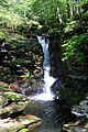 Adams Falls 2.JPG