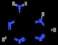 Adenin (structural formula).png