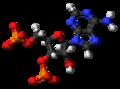Adenosine-3',5'-bisphosphate-anion-3D-balls.png