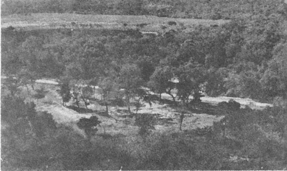 Aerial view of Km 75 Ruins