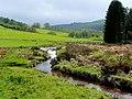Afon Biga - geograph.org.uk - 1288681.jpg