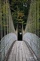 Afon Conwy Footbridge (27746811414).jpg