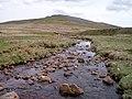 Afon Giedd below Disgwylfa - geograph.org.uk - 166923.jpg