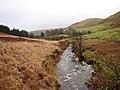 Afon Tywi - geograph.org.uk - 290978.jpg