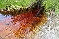 Aguas rojizas comunidad indigena Golondrina - panoramio.jpg