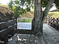 Alba Carolina Fortress 2011 - Francisc De Paola Ravelin Sign.jpg
