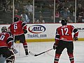 Albany Devils vs. Portland Pirates - December 28, 2013 (11622349763).jpg