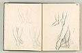 Album of Forty-five Figure Studies MET DP102554.jpg