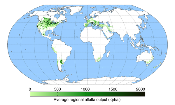 Worldwide alfalfa production Alfalfaoutput.png