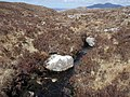 Allt a' Choire Bhig - geograph.org.uk - 780007.jpg