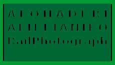 Alqhaderi Aliffianiko Railphotograph.png