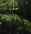 Am Rand des Landschaftsschutzgebiets Osdorf.jpg