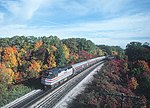Amtrak 347 with southbound Maple Leaf approaching Bayview Junction, October 1981.jpg