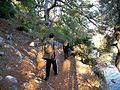 Ancient way in Gocek - Dalaman bays - panoramio.jpg