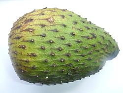 meaning of annona