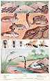Ants Between pages 108 and 109.jpg