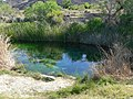 Ash Meadows Point of Rocks Springs 2.jpg