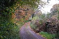 Autumn colours, 1066 Country Walk - geograph.org.uk - 2187761.jpg